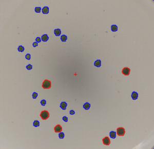 labimage_oa_spots